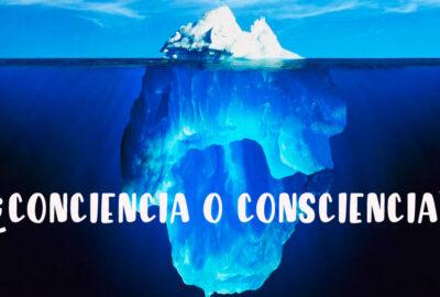 Conciencia o consciencia